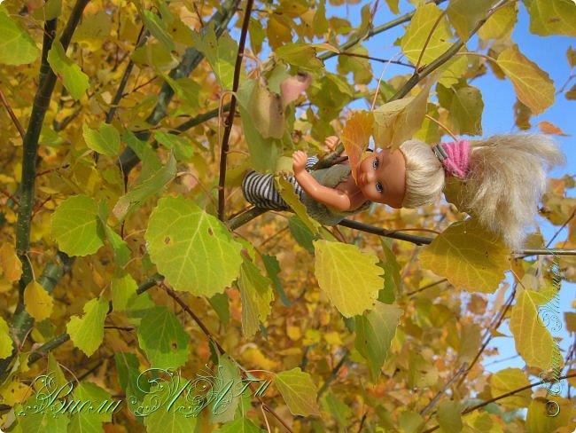 Добрый вечер!(а у кого - то день :D )Сегодня был довольно хороший денек, и мы ездили в осенний лес!Как же там красиво))))Я взяла с собой Марту, как раз сшились штанцы и топ! Шишечку нашла :) их там очееньь много :) фото 13