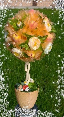 Персиковое деревце на день рождения подруге))  фото 1