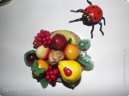 """Магниты сделаны из фруктов-муляжей, а маленькие магнитики  лепили  с дочкой лет 5 назад, из застывающей массы """"оранжевый слон"""" и подарили бабушкам и тетям фото 1"""