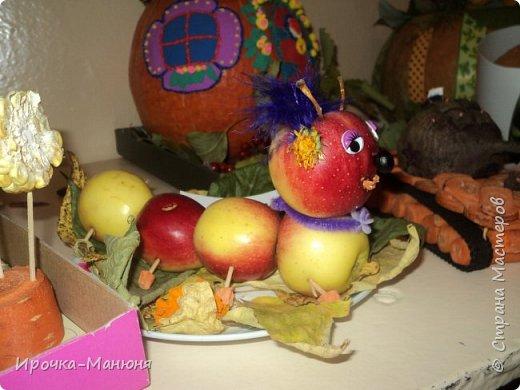 """Школьная выставка поделок из овощей и фруктов. В этом году мне удалось запечатлеть на какие """"подвиги"""" способны наши родители со своими детками! Тут можно было собрать целую флотилию, большую стаю пингвинов, компанию ёжиков, паровозное депо и деревню домов и двориков. Приглашаю посмотреть, а может даже взять что-либо на заметку. фото 49"""