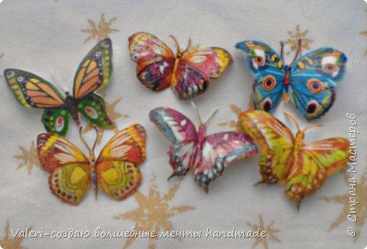 Мастер-класс Поделка изделие Декупаж Декупажные объёмные бабочки Бутылки пластиковые Краска Салфетки фото 10