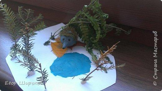 Ёжик в осеннем лесу фото 1