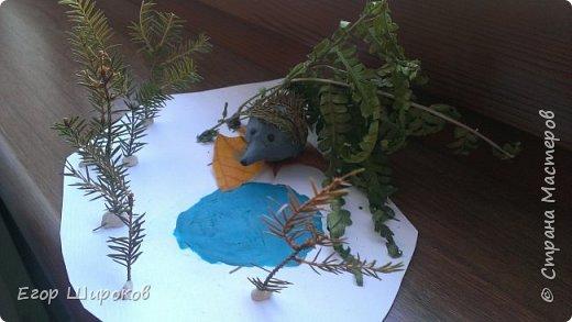 Ёжик в осеннем лесу фото 2