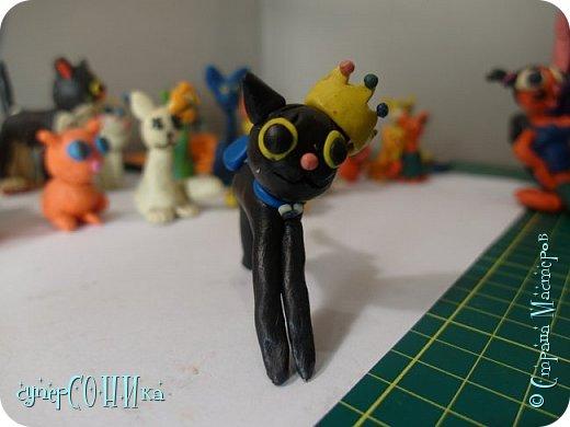 Всем привет!!! Решила выложить коллекцию моих пластилиновых кошечек:3  Здесь у меня киски разного возраста, так что есть и запыленные, и поврежденные... Некоторых я даже слепила несколько лет назад (!), а одну даже сегодня ( черная котя в диадеме между рыжей девушкой-кошкой и котика с синей мисочкой). И так, преступим:) фото 28