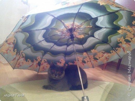 Здравствуйте!!! Слепила такого печального котёнка, но по моему очень даже симпатичного. Да на дворе осень, не очень радостное время, наверно и котенок соответствует этой поре года. фото 3
