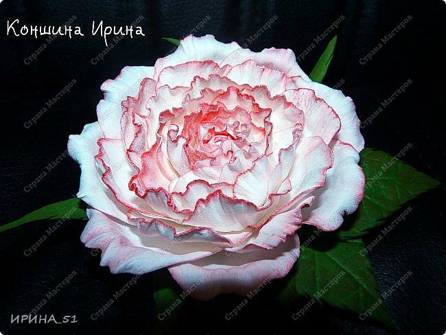 Здравствуйте дорогие жители Страны Мастеров! Сегодня я к вам с новыми украшениями. Делаю цветы, что бы хоть как-то продлить летнее настроение. А за окном у нас уже холодная северная осень, при чем  даже снежная...  фото 2