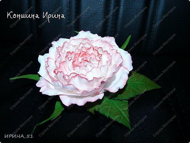 Здравствуйте дорогие жители Страны Мастеров! Сегодня я к вам с новыми украшениями. Делаю цветы, что бы хоть как-то продлить летнее настроение. А за окном у нас уже холодная северная осень, при чем  даже снежная...  фото 4