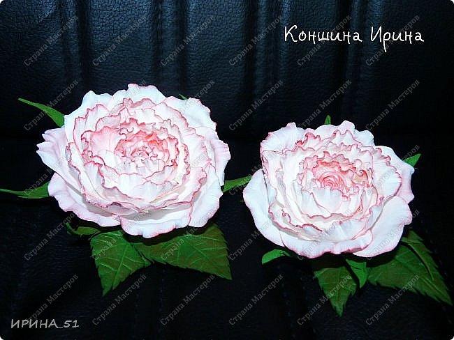 Здравствуйте дорогие жители Страны Мастеров! Сегодня я к вам с новыми украшениями. Делаю цветы, что бы хоть как-то продлить летнее настроение. А за окном у нас уже холодная северная осень, при чем  даже снежная...  фото 1