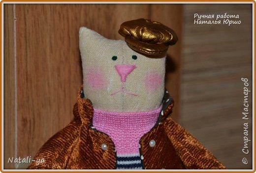 Кот Василий принарядился в кепку золотистого цвета фото 1