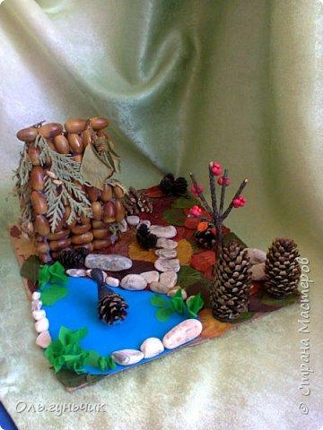 Попросили в садике сделать поделку из природного материала...Сын насобирал большой пакет желудей и насушил листья)) ну как не сделать...Вот такая лесная полянка у меня получилась))) фото 3