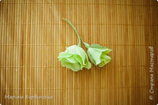 Мастер-класс Моделирование конструирование Мастер-класс по созданию прекрасной розы Бумага гофрированная фото 10