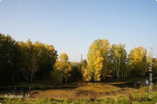 Продолжаю репортаж отпуска в деревне.  фото 22