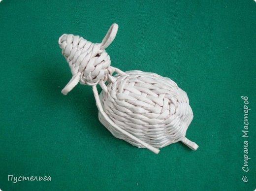 Мастер-класс Поделка изделие Плетение Овечка Бумага Трубочки бумажные фото 21