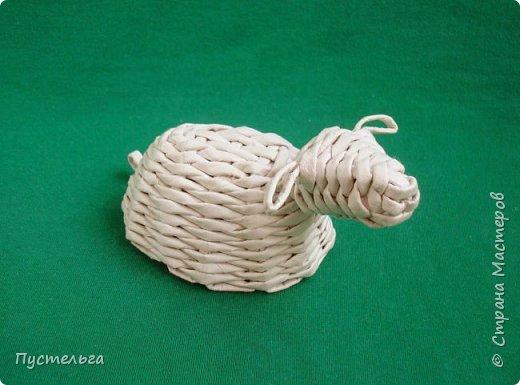 Ну вот, и обещанная овечка. Даже две овечки - одна отдыхает...