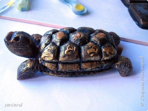 Поступил заказ, для одной Итальянской синьоры увлекающейся разного рода черепашками, куклами и тарелками. Сама особа почтенного возраста и довольно творческий человек судя по описаниям моего клиента.  Поэтому было решено создать мыльный подарок в виде черепахи. фото 3