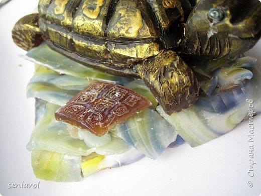 Поступил заказ, для одной Итальянской синьоры увлекающейся разного рода черепашками, куклами и тарелками. Сама особа почтенного возраста и довольно творческий человек судя по описаниям моего клиента.  Поэтому было решено создать мыльный подарок в виде черепахи. фото 6