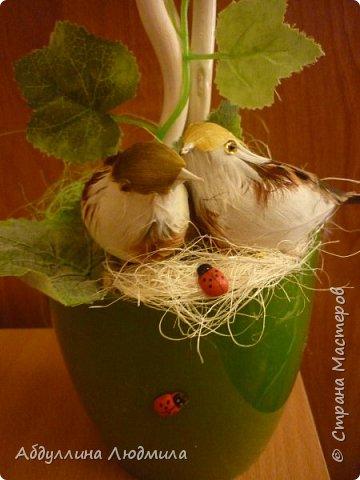 Обожаю виноград!!! фото 2