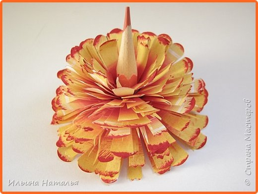 Мастер-класс День учителя Квиллинг Квиллинг-цветочек с карандашиком Бумага Карандаш Клей Краска фото 1