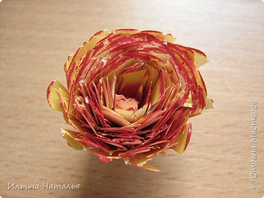Мастер-класс День учителя Квиллинг Квиллинг-цветочек с карандашиком Бумага Карандаш Клей Краска фото 25