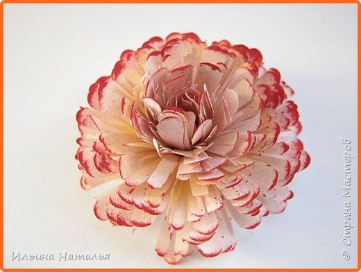 Мастер-класс День учителя Квиллинг Квиллинг-цветочек с карандашиком Бумага Карандаш Клей Краска фото 31
