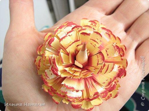 Мастер-класс День учителя Квиллинг Квиллинг-цветочек с карандашиком Бумага Карандаш Клей Краска фото 30