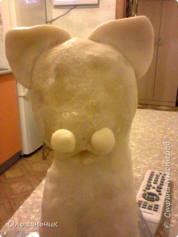 Мастер-класс Поделка изделие Лепка Мукосольная кошка МК Тесто соленое Шпагат фото 18
