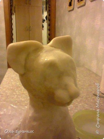 Мастер-класс Поделка изделие Лепка Мукосольная кошка МК Тесто соленое Шпагат фото 23