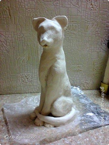 Мастер-класс Поделка изделие Лепка Мукосольная кошка МК Тесто соленое Шпагат фото 26
