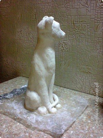 Мастер-класс Поделка изделие Лепка Мукосольная кошка МК Тесто соленое Шпагат фото 27
