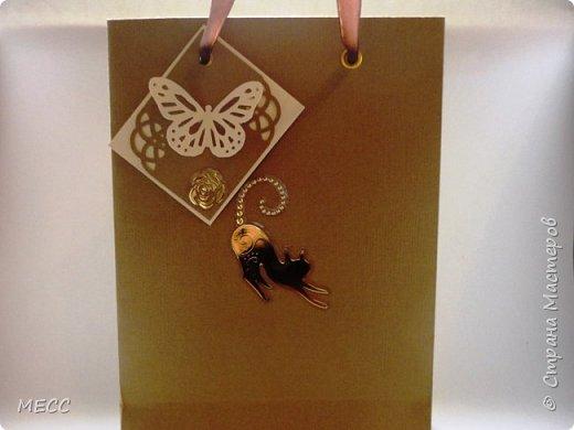 Это мой первый пакет. Сделала для шоколадницы учителю в подарок. фото 1