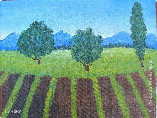 Недавно с ребятами вспоминали лето,рисовали несколько разных пейзажей.Этот,с лавандовыми полями,особенно понравился детям.Решила сделать по нему небольшой МК.Этот МК для тех,кто,не умея рисовать,хочет почувствовать себя художником! И так,для работы нам понадобится поверхность,на чём мы будем рисовать.Это может быть и бумага,и холст,и кусок оргалита,картона.Краски могут быть разными,в зависимости  от того,что у Вас есть в наличии.С детьми мы рисовали гуашью,для МК я брала акриловые.Масло было бы идеально!Для смешивания красок нужна палитра.И,конечно,нам нужны кисти.У детей было три щетиновые кисти,№12, №4, №2. фото 7