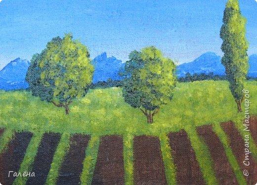 Недавно с ребятами вспоминали лето,рисовали несколько разных пейзажей.Этот,с лавандовыми полями,особенно понравился детям.Решила сделать по нему небольшой МК.Этот МК для тех,кто,не умея рисовать,хочет почувствовать себя художником! И так,для работы нам понадобится поверхность,на чём мы будем рисовать.Это может быть и бумага,и холст,и кусок оргалита,картона.Краски могут быть разными,в зависимости  от того,что у Вас есть в наличии.С детьми мы рисовали гуашью,для МК я брала акриловые.Масло было бы идеально!Для смешивания красок нужна палитра.И,конечно,нам нужны кисти.У детей было три щетиновые кисти,№12, №4, №2. фото 9