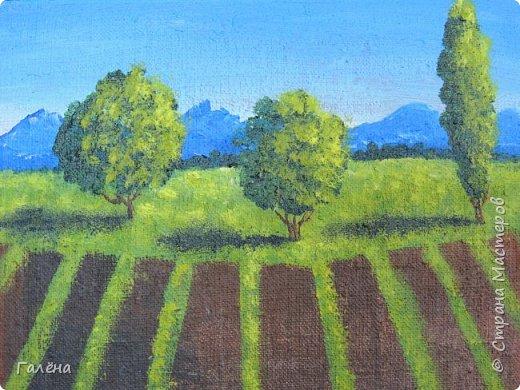 Недавно с ребятами вспоминали лето,рисовали несколько разных пейзажей.Этот,с лавандовыми полями,особенно понравился детям.Решила сделать по нему небольшой МК.Этот МК для тех,кто,не умея рисовать,хочет почувствовать себя художником! И так,для работы нам понадобится поверхность,на чём мы будем рисовать.Это может быть и бумага,и холст,и кусок оргалита,картона.Краски могут быть разными,в зависимости  от того,что у Вас есть в наличии.С детьми мы рисовали гуашью,для МК я брала акриловые.Масло было бы идеально!Для смешивания красок нужна палитра.И,конечно,нам нужны кисти.У детей было три щетиновые кисти,№12, №4, №2. фото 10