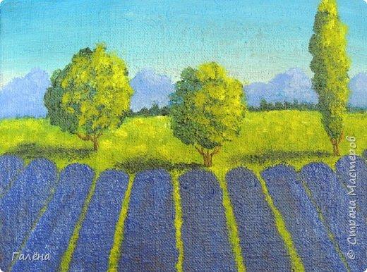 Недавно с ребятами вспоминали лето,рисовали несколько разных пейзажей.Этот,с лавандовыми полями,особенно понравился детям.Решила сделать по нему небольшой МК.Этот МК для тех,кто,не умея рисовать,хочет почувствовать себя художником! И так,для работы нам понадобится поверхность,на чём мы будем рисовать.Это может быть и бумага,и холст,и кусок оргалита,картона.Краски могут быть разными,в зависимости  от того,что у Вас есть в наличии.С детьми мы рисовали гуашью,для МК я брала акриловые.Масло было бы идеально!Для смешивания красок нужна палитра.И,конечно,нам нужны кисти.У детей было три щетиновые кисти,№12, №4, №2. фото 11