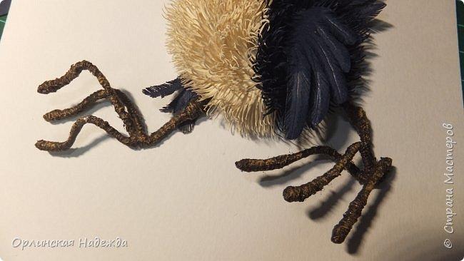 Картина панно рисунок Мастер-класс Бумагопластика Квиллинг ПТИЦА СЧАСТЬЯ Бумага Клей Проволока Шпагат фото 38