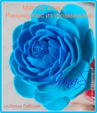 Мастер-класс Мастер класс Изготовление цветка Ранункулюс из фоамирана Фоамиран фом фото 1