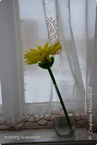 Бонсай топиарий декор предметов свит