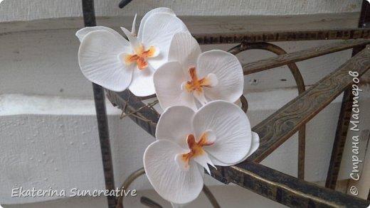 Вот такие орхидеи фаленопсис получились! Это моя вторая работа, захотелось сделать беленькие..