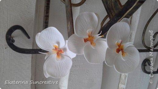 Вот такие орхидеи фаленопсис получились! Это моя вторая работа, захотелось сделать беленькие.. фото 2