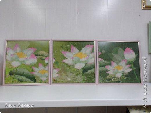 Триптих Лотосы.  Размер каждой картины 43х43 см фото 1