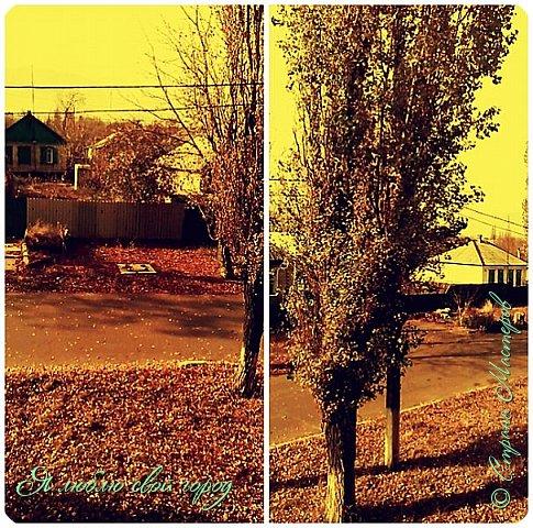 За окном такая красивая осень,что я решила пофотографировать осень за окном в школе,дома.Это осень за окном школы.