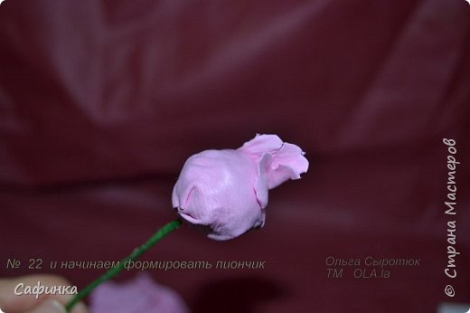 Здравствуйте,Страна Мастеров!!!  Вас приветствую, я Ольга Сыротюк (псевдоним Сафинка)   Предлагаю вашему вниманию свой мастер класс по созданию милого,нежного пиона...из Фоама...  Пион- цветок любви и нежности... фото 23