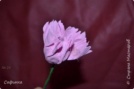 Здравствуйте,Страна Мастеров!!!  Вас приветствую, я Ольга Сыротюк (псевдоним Сафинка)   Предлагаю вашему вниманию свой мастер класс по созданию милого,нежного пиона...из Фоама...  Пион- цветок любви и нежности... фото 25