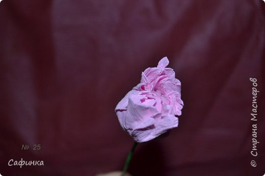 Здравствуйте,Страна Мастеров!!!  Вас приветствую, я Ольга Сыротюк (псевдоним Сафинка)   Предлагаю вашему вниманию свой мастер класс по созданию милого,нежного пиона...из Фоама...  Пион- цветок любви и нежности... фото 26