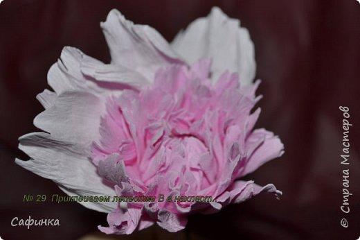 Здравствуйте,Страна Мастеров!!!  Вас приветствую, я Ольга Сыротюк (псевдоним Сафинка)   Предлагаю вашему вниманию свой мастер класс по созданию милого,нежного пиона...из Фоама...  Пион- цветок любви и нежности... фото 30