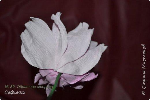Здравствуйте,Страна Мастеров!!!  Вас приветствую, я Ольга Сыротюк (псевдоним Сафинка)   Предлагаю вашему вниманию свой мастер класс по созданию милого,нежного пиона...из Фоама...  Пион- цветок любви и нежности... фото 31