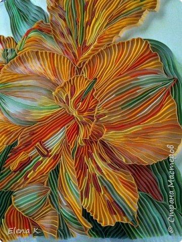 тропический цветок фото 2