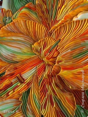 тропический цветок фото 1