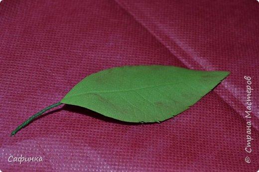Мастер-класс Обрабатываем листочки из Фоама без использования молдов Фоамиран фом фото 1