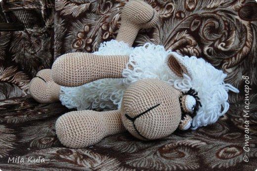 Мой первый Бараныч....простенький, незатейливый......но очень миленький:) фото 2